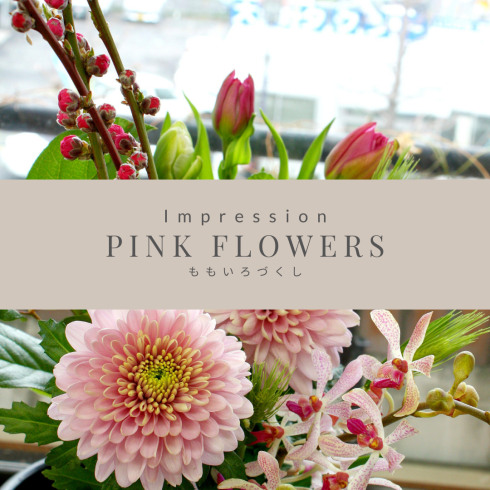 PINK FLOWERS ももいろづくし_a0085317_16262751.png