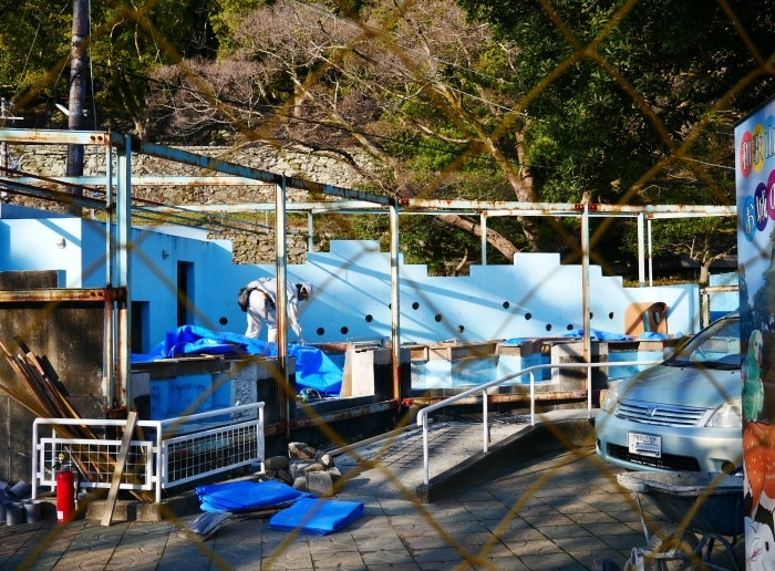 お城の動物園便り  ペンギン舎改造工事  2021-02-15 00:00_b0093754_21124683.jpg