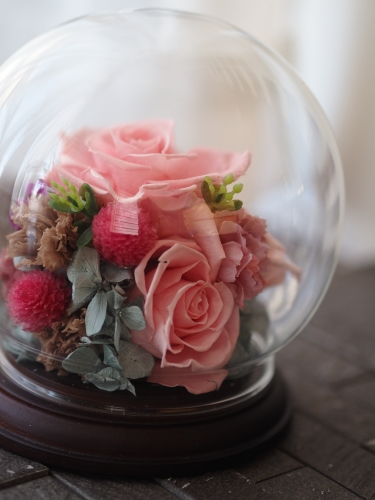 【Pink/ガラスドーム仏花アレンジメント】_d0144095_11413767.jpg