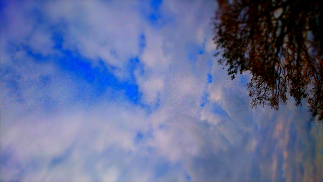 暖かな日_d0132289_16221875.jpg