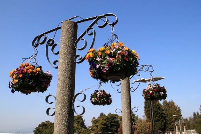 花を求めて 宇治市植物公園_e0048413_21312236.jpg