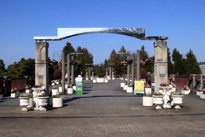 花を求めて 宇治市植物公園_e0048413_21312694.jpg
