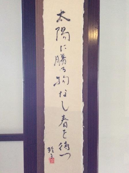 「芭蕉の館」館内を飾る俳句_f0289632_19134394.jpg