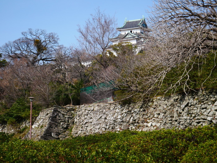 和歌山城冬景色  2021-02-17 00:00_b0093754_22520439.jpg