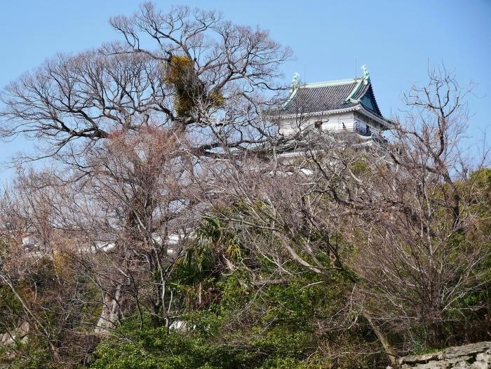和歌山城冬景色  2021-02-17 00:00_b0093754_22524476.jpg