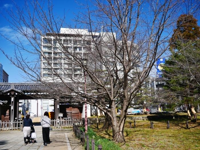 和歌山城冬景色  2021-02-17 00:00_b0093754_22552029.jpg