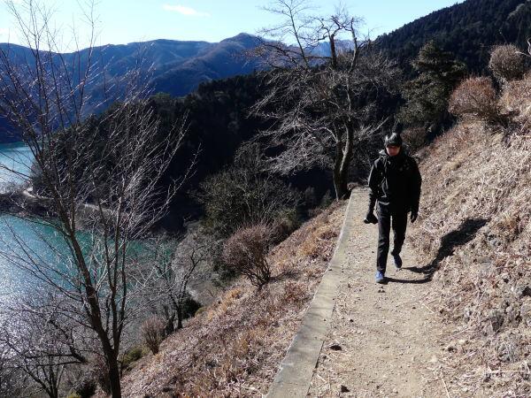 冬の奥多摩湖 見はらしの丘のカモシカ_a0351368_21571031.jpg