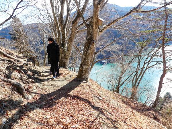 冬の奥多摩湖 見はらしの丘のカモシカ_a0351368_22010569.jpg