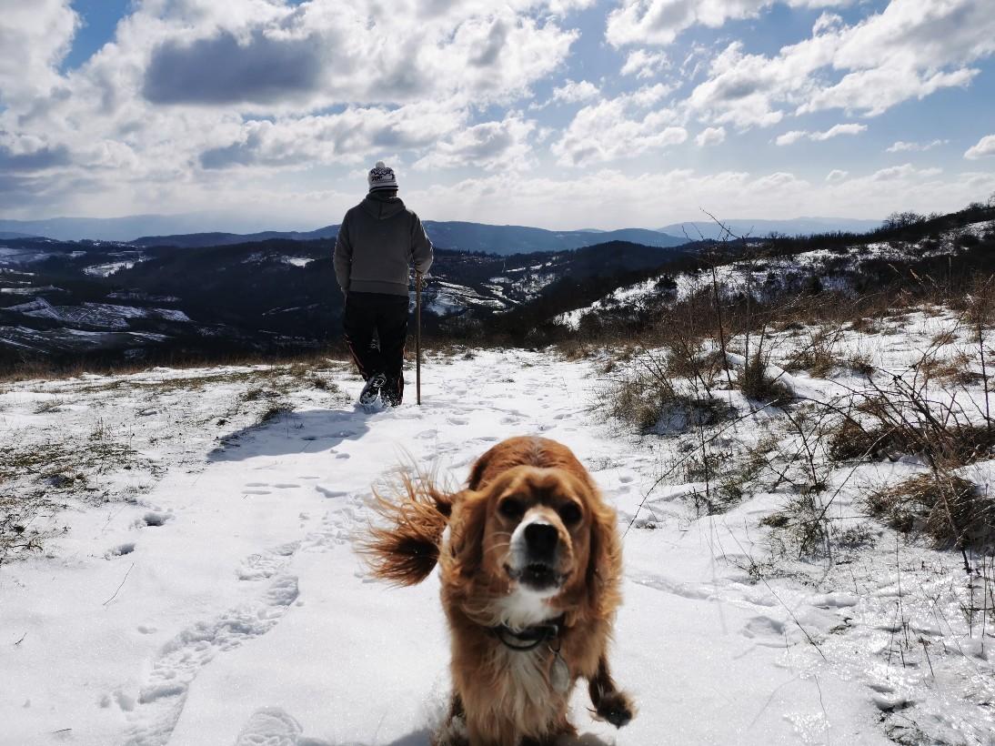 日曜日の雪散歩_f0106597_20033547.jpg