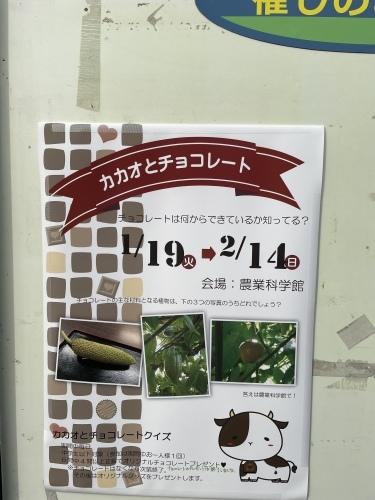 戸田川緑地へ行ってきました♪_f0373339_14145518.jpeg