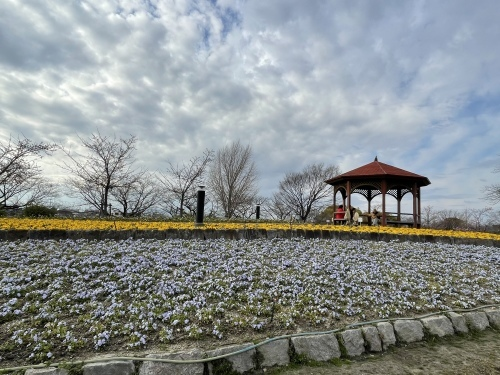 戸田川緑地へ行ってきました♪_f0373339_14151965.jpeg