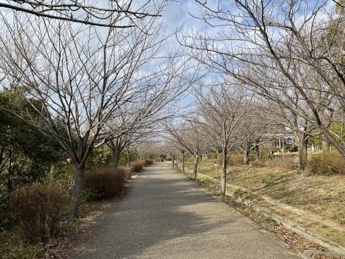 戸田川緑地へ行ってきました♪_f0373339_14162783.jpeg