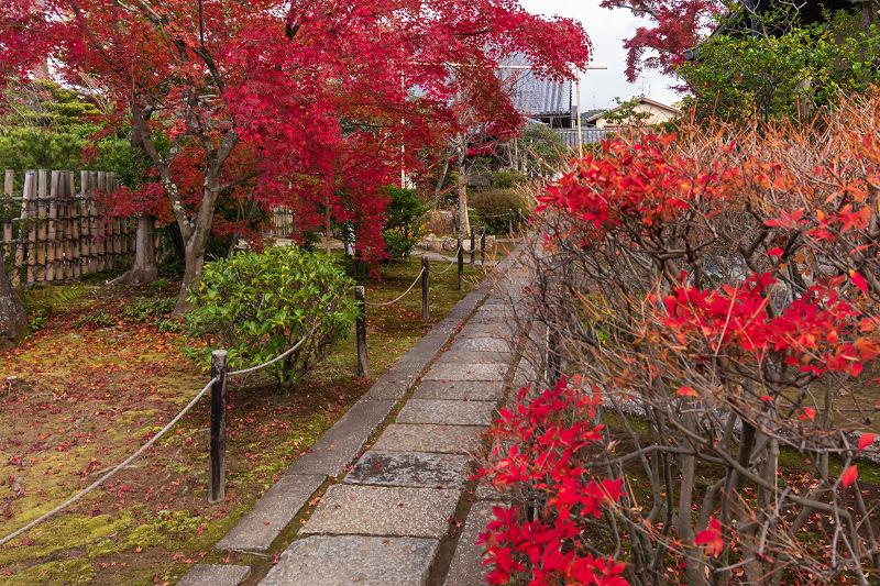 2020紅葉きらめく京都 大法院の敷紅葉_f0155048_23263184.jpg