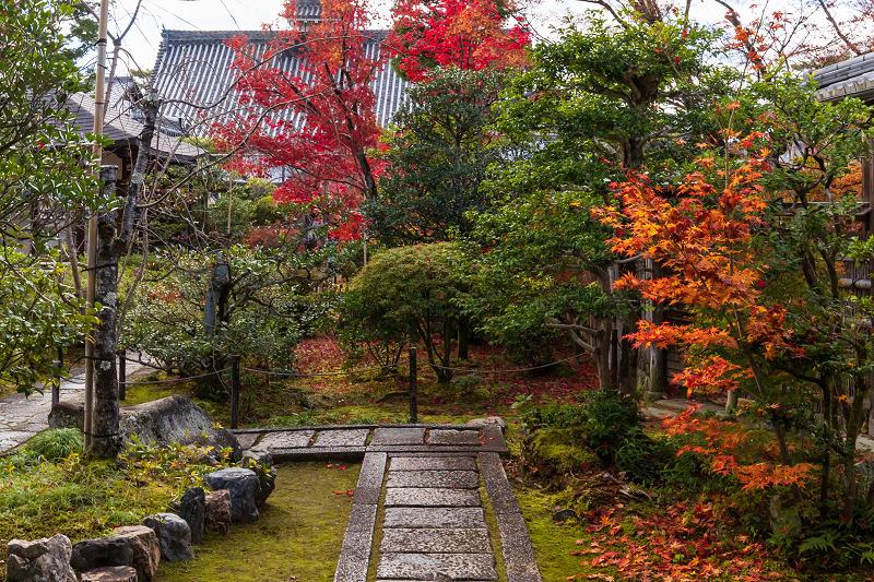 2020紅葉きらめく京都 大法院の敷紅葉_f0155048_23264792.jpg