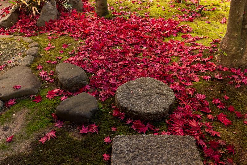 2020紅葉きらめく京都 大法院の敷紅葉_f0155048_23270881.jpg