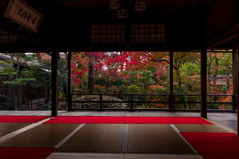 2020紅葉きらめく京都 大法院の敷紅葉_f0155048_23274161.jpg