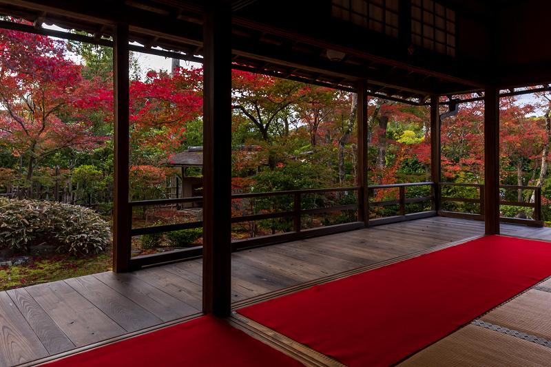 2020紅葉きらめく京都 大法院の敷紅葉_f0155048_23274839.jpg
