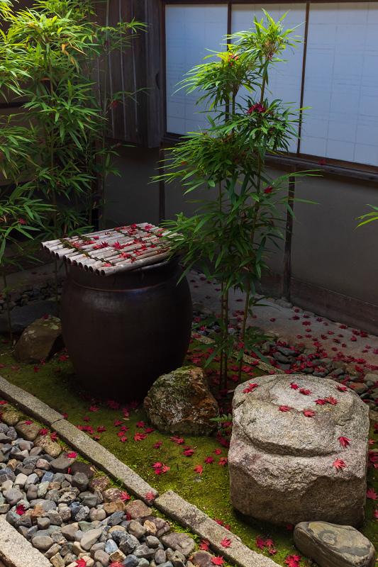 2020紅葉きらめく京都 大法院の敷紅葉_f0155048_23283141.jpg
