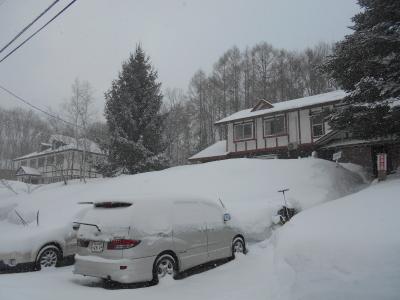 2月16日 火曜日 0度  雪_f0210811_12023164.jpg