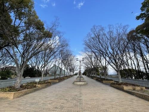庄内緑地公園へお散歩♬_f0373339_16325338.jpeg