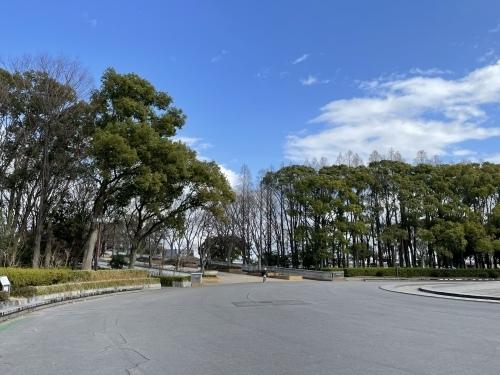 庄内緑地公園へお散歩♬_f0373339_16330404.jpeg
