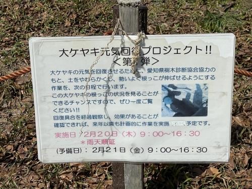 庄内緑地公園へお散歩♬_f0373339_16385945.jpeg