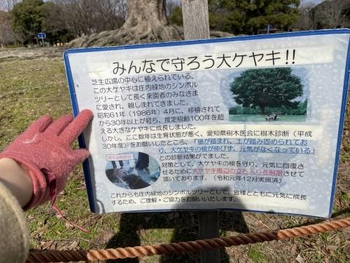 庄内緑地公園へお散歩♬_f0373339_16390932.jpeg