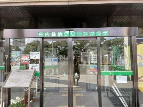 庄内緑地公園へお散歩♬_f0373339_16432753.jpeg