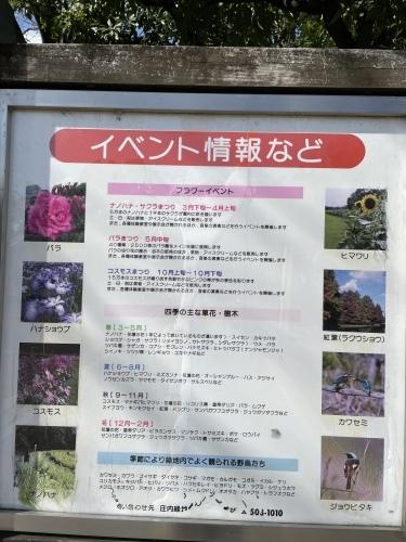 庄内緑地公園へお散歩♬_f0373339_16452353.jpeg