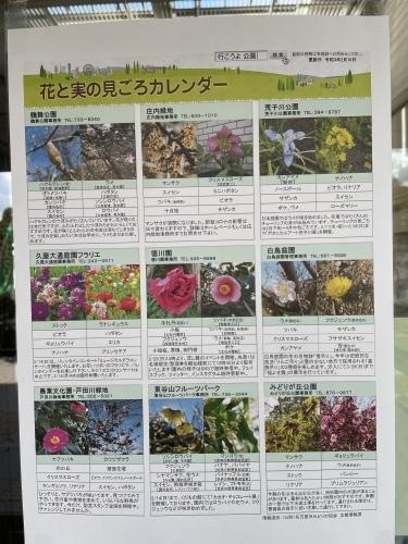 庄内緑地公園へお散歩♬_f0373339_16453787.jpeg