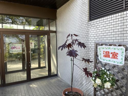 庄内緑地公園へお散歩♬_f0373339_16470015.jpeg