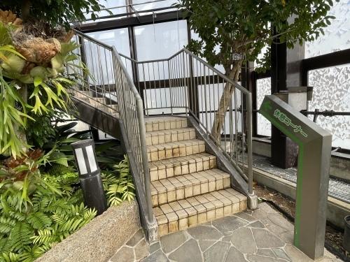 庄内緑地公園へお散歩♬_f0373339_16493108.jpeg