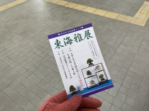 庄内緑地公園 東海雅展2021_f0373339_16541630.jpeg