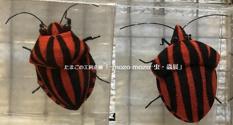 たまごの工房企画「-mozo mozo- 虫・蟲展」 その2_e0134502_18004333.jpg