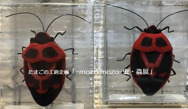 たまごの工房企画「-mozo mozo- 虫・蟲展」 その2_e0134502_18004928.jpg