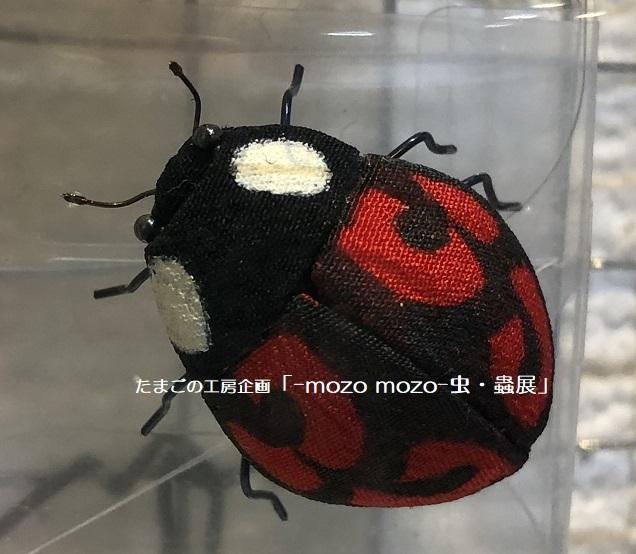 たまごの工房企画「-mozo mozo- 虫・蟲展」 その2_e0134502_18021118.jpg