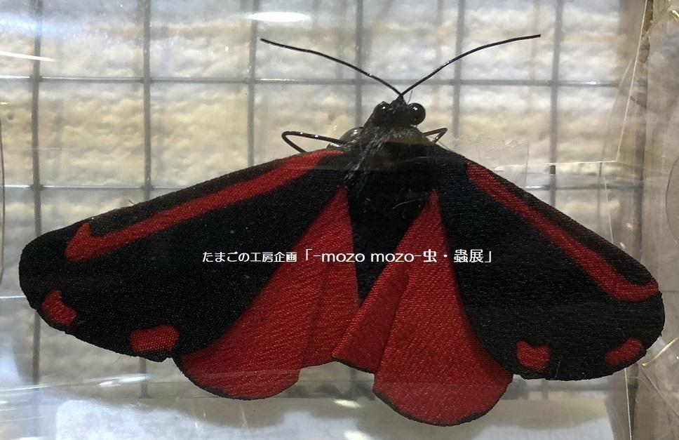たまごの工房企画「-mozo mozo- 虫・蟲展」 その2_e0134502_18021651.jpg