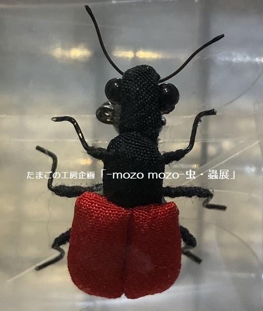 たまごの工房企画「-mozo mozo- 虫・蟲展」 その2_e0134502_18022142.jpg