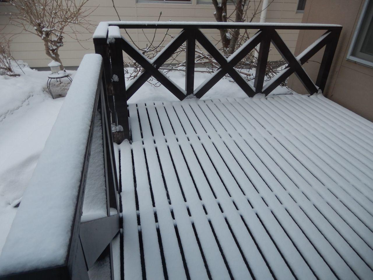 暴風雪はきませんでしたが真冬日が戻ってきました_c0025115_20324603.jpg