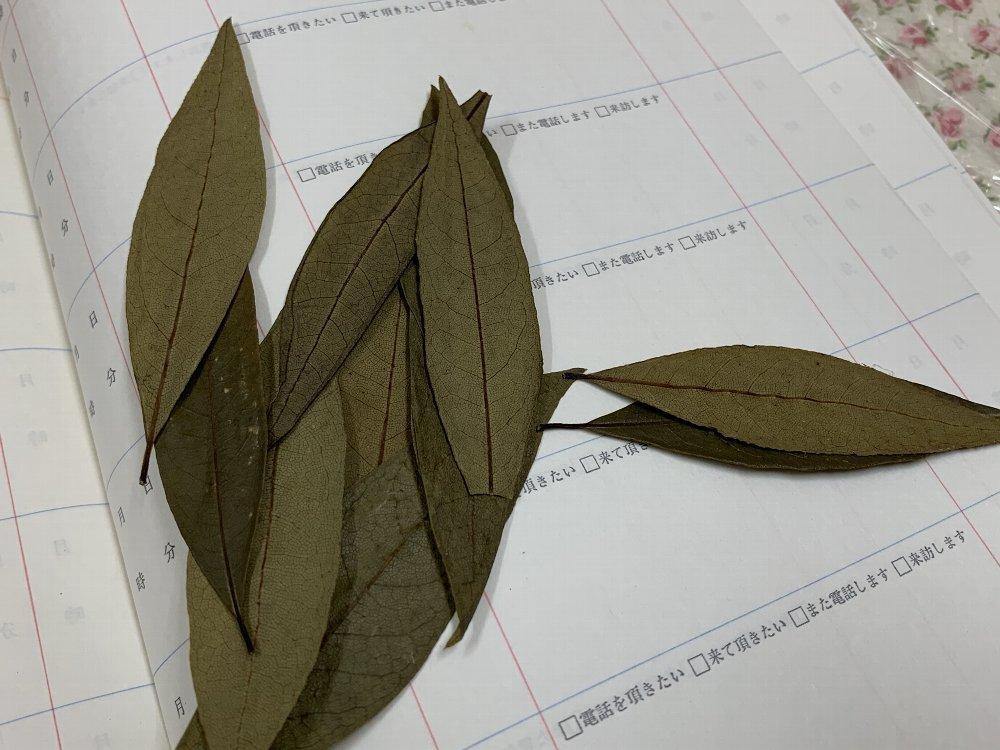 ☆ローレルは押し葉のように☆_c0092953_21202518.jpg
