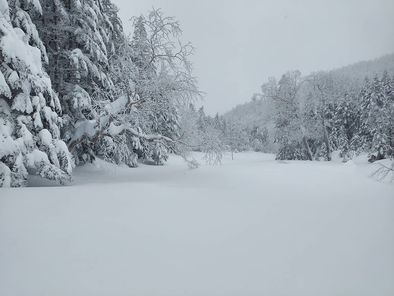 厳冬期八ヶ岳テント泊_e0231387_15033826.jpg