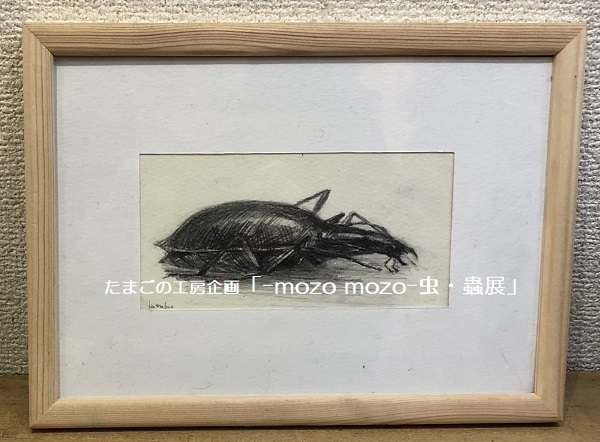 たまごの工房企画「-mozo mozo- 虫・蟲展」 その3_e0134502_18563930.jpg