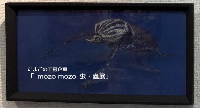 たまごの工房企画「-mozo mozo- 虫・蟲展」 その3_e0134502_18564436.jpg