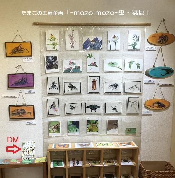 たまごの工房企画「-mozo mozo- 虫・蟲展」 その3_e0134502_18573886.jpg