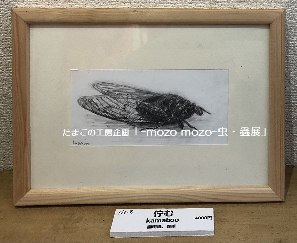 たまごの工房企画「-mozo mozo- 虫・蟲展」 その3_e0134502_18574828.jpg
