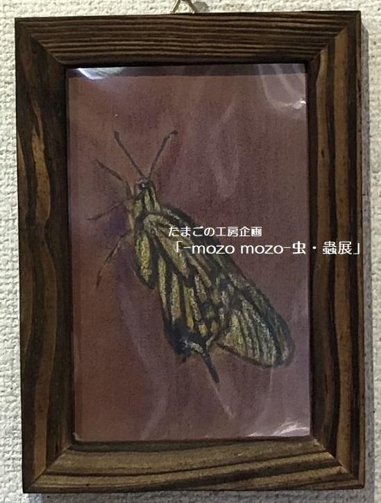 たまごの工房企画「-mozo mozo- 虫・蟲展」 その3_e0134502_18584335.jpg