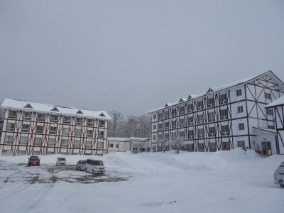 2月18日 木曜日  雪  -4度_f0210811_11403944.jpg