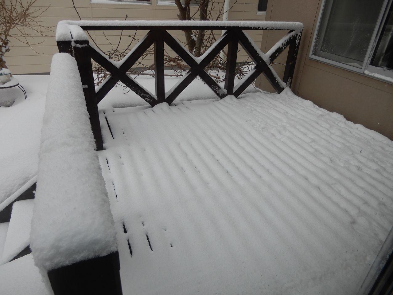 真冬日も覚悟していたものの意外と暖かく最高気温がプラス2.3℃_c0025115_20442707.jpg