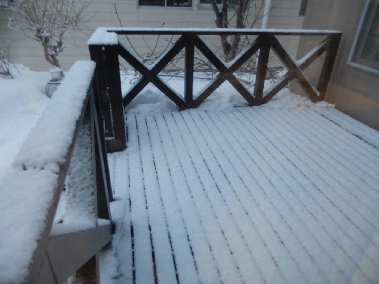 真冬日も覚悟していたものの意外と暖かく最高気温がプラス2.3℃_c0025115_20475494.jpg