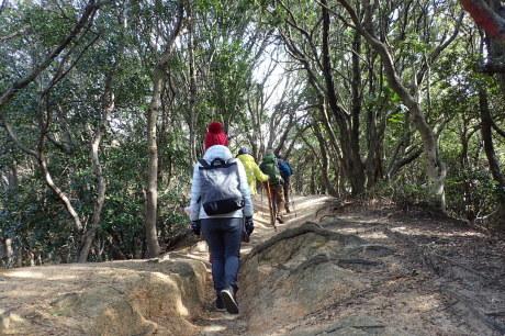 体力に応じて楽しむ山歩き『塩屋から板宿』A班_c0218841_10411515.jpg